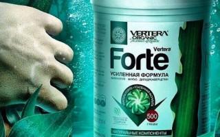 Гел от Вертера Гел Форте за детокс, здрави кости и клетъчно хранене